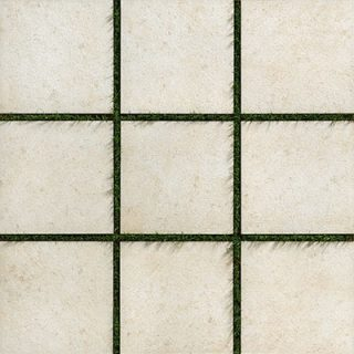 Topography Paver White