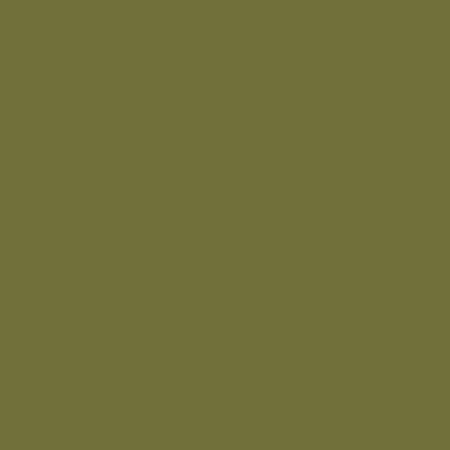 Numbered-Olive-Green